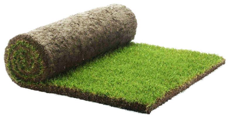 премиум рулонный газон
